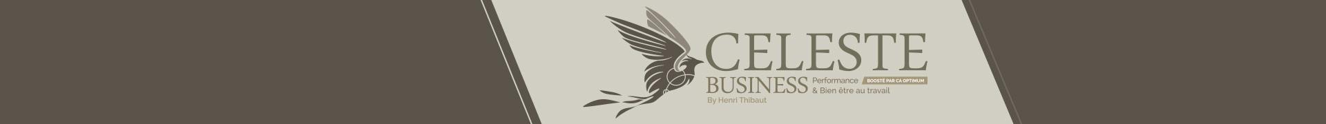 bandeau-celeste-business